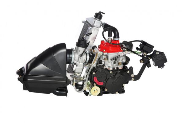 Motor Rotax 125 MAX EVO Mod. 18