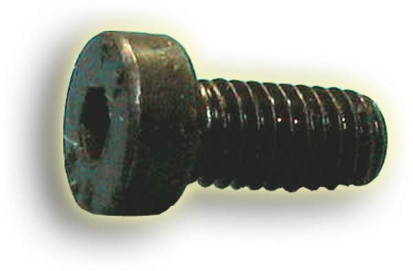 Schraube ISK M8x20 blank